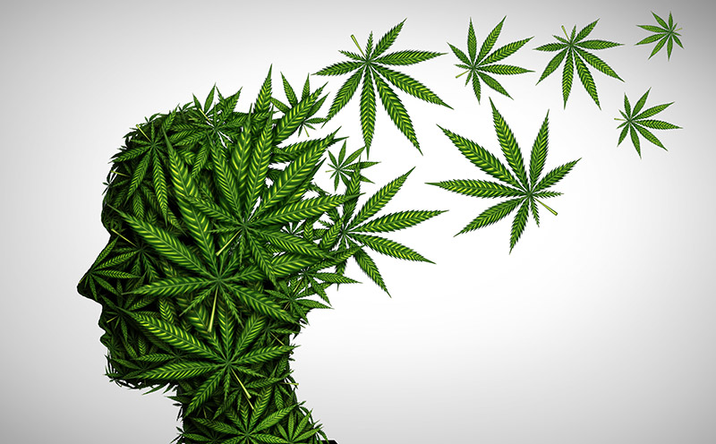 breaking free from cannabis addiction